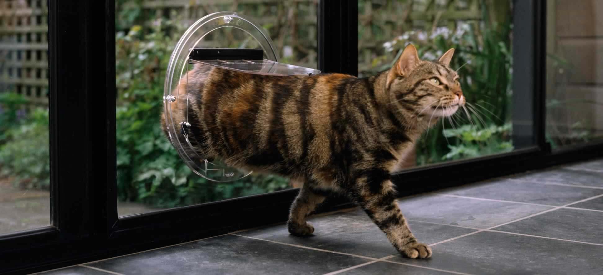 Transcat Cat Door